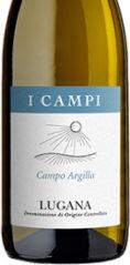 Campo Argilla