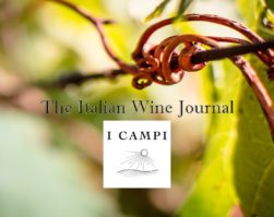 The Italian Wine Journal – I Campi di Flavio Prà equilibrio e vertigine